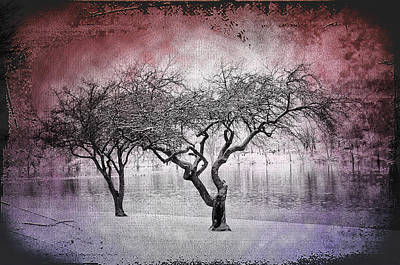 Winters Past Art Print by Bill Cannon