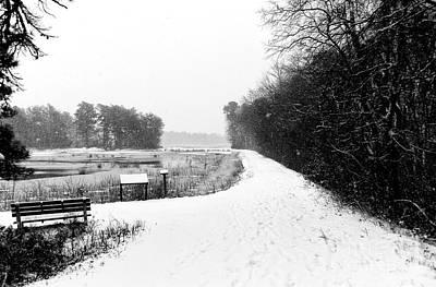 Photograph - Winter's Path by John Rizzuto
