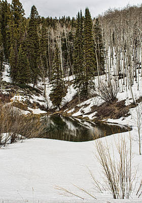 Photograph - Winters Pond by Steven Parker