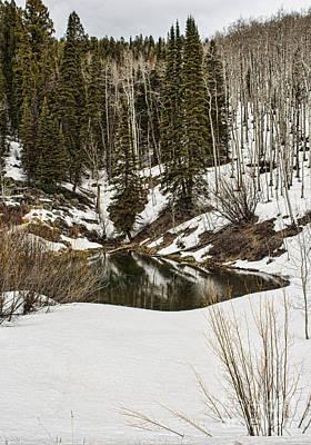 Photograph - Winters Pond by Steven Parker