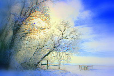 Photograph - Winters Pretty Presents by Julie Lueders
