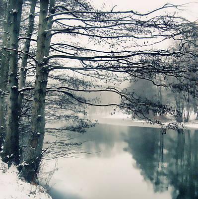 Photograph - Winter's Reach by Jessica Jenney