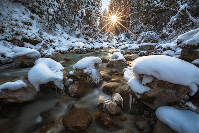 Zauberwald Photograph - Winter's Tale by Kaloyan Georgiev