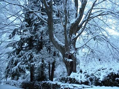 Winter's Touch Art Print by Karen Moulder