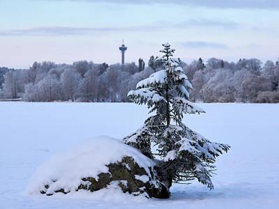 Photograph - Winterscene 12 by Jouko Lehto
