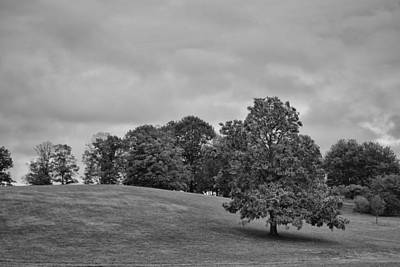 Photograph - Winterthur Estate by Shawn Colborn