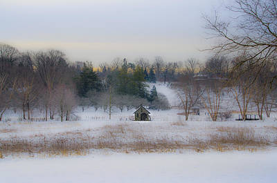 Phillies Photograph - Wintertime In Morris Arboretum by Bill Cannon