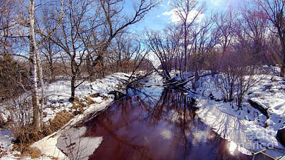 Photograph - Wintertime In Necedah  by Ricky L Jones