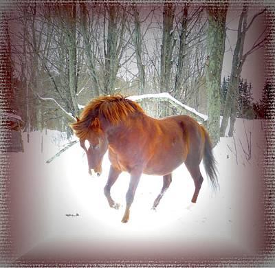 Wintertime Magic Original