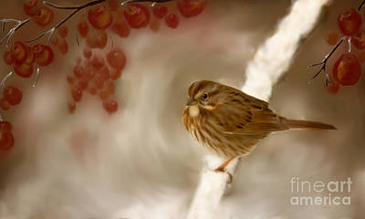 Wintertime Painting - Wintertime Sparrow by Beve Brown-Clark Photography