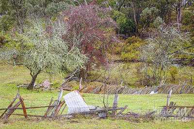Wintery Australian Landscape 2 Print by Lexa Harpell