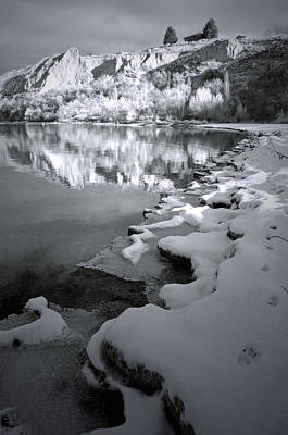 Photograph - Wintery Shore In Black And White by Tara Turner