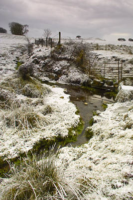 Scenic Photograph - Wintery Stream by William Cleary