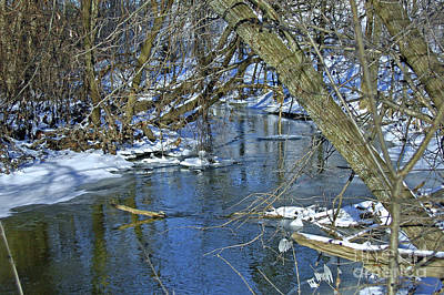 Photograph - Wintry Stream by Ann Horn