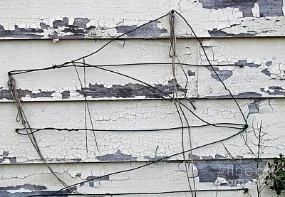 Photograph - Wire by Ethna Gillespie