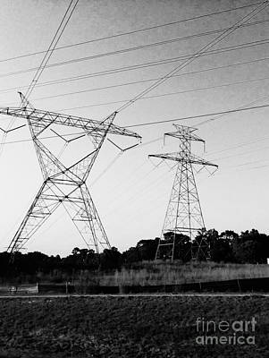 Photograph - Wire Line by Robin Lewis