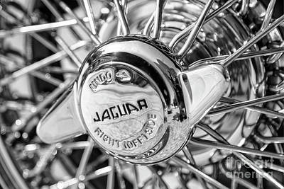 Photograph - Wire Wheel Black And White by Dennis Hedberg