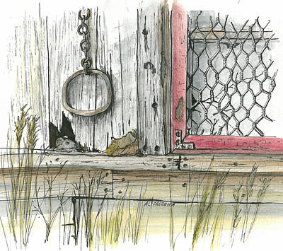 Old Shed Drawing - Wired Window by Albert Calzetta