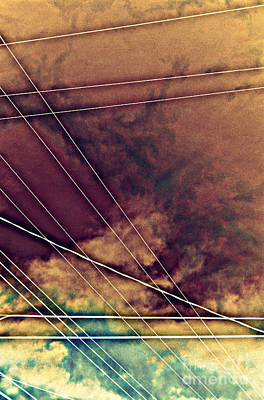 Photograph - wires III by Diane montana Jansson
