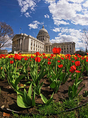 Photograph - Wisconsin Capitol And Tulips 3 by Steven Ralser