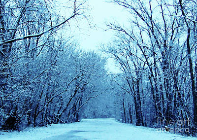 Photograph - Wisconsin Frosty Road In Winter Ice by Ron Tackett