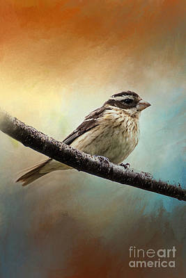 Wisconsin Songbird Art Print