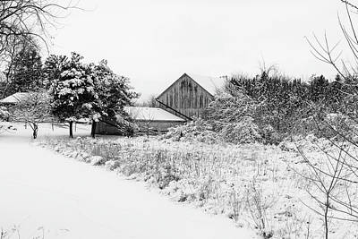 Photograph - Wisconsin Winter by CJ Schmit