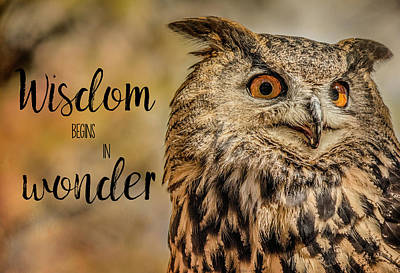 Photograph - Wisdom Begins In Wonder by Teresa Wilson