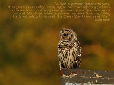 Photograph - Wisdom by Charles McKelroy