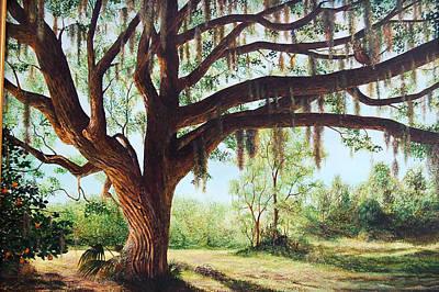 Wise Old Oak Art Print
