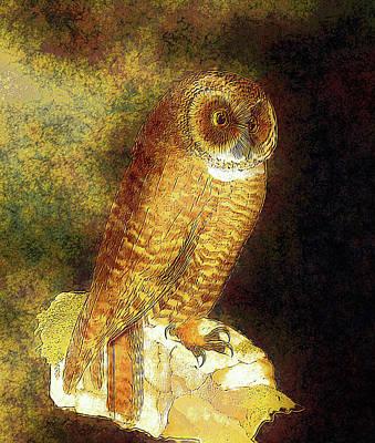 Digital Art - Wisely Whimsical Golden Owl by Georgiana Romanovna