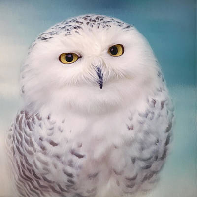 Wisest Of All - Owl Art Art Print