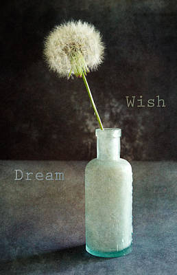 Photograph - Wish And Dream by Randi Kuhne