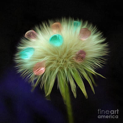 Fantasy Flowers Photograph - Wish Of Fortune by Krissy Katsimbras