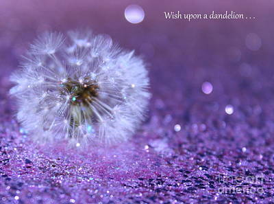 Photograph - Wish Upon by Krissy Katsimbras