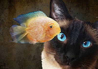 Gold Fish Painting - Wishful Thinking 2 - Siamese Cat Art - Sharon Cummings by Sharon Cummings