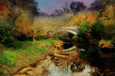 Photograph - Wishful Dreaming by Diana Angstadt