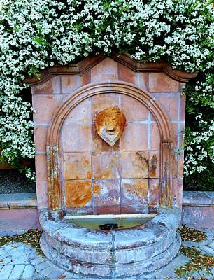 Photograph - Wishing Well by Dietmar Scherf