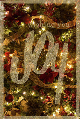 Photograph - Wishing You Joy by Pamela Williams