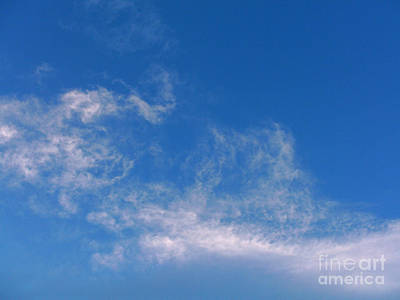 Photograph - Wispy 3 by Methune Hively