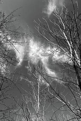 Photograph - Wispy Clouds 2017 Bw by Mary Bedy