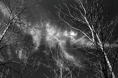 Photograph - Wispy Clouds 2017 Horizontal Bw by Mary Bedy