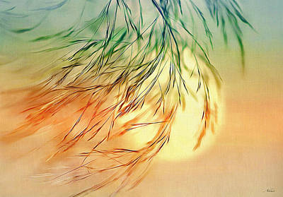 Digital Art - Wispy Sunset-0 by Nina Bradica