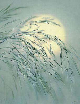 Digital Art - Wispy Sunset-6 by Nina Bradica