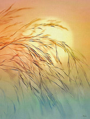 Digital Art - Wispy Sunset by Nina Bradica