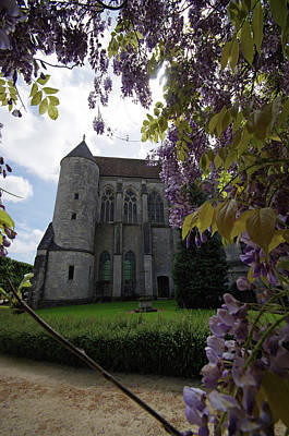 Photograph - Wisteria At Chartres by Sarah Lamoureux