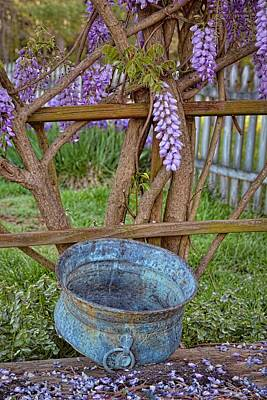 Photograph - Wisteria Blooms And Planter by Greg Jackson
