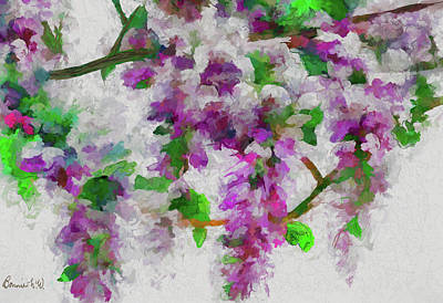 Digital Art - Wisteria Branch by Bonnie Willis