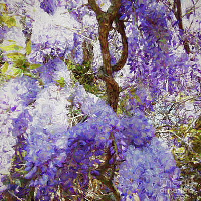 Mixed Media - Wisteria by Helen White