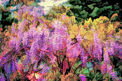 Digital Art - Wisteria In The Spring by Melinda Dreyer